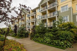 """Photo 3: 215 5020 221A Street in Langley: Murrayville Condo for sale in """"Murrayville House"""" : MLS®# R2450889"""