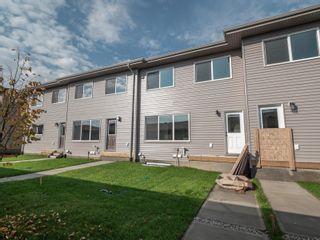 Photo 29: 2615 201 Street in Edmonton: Zone 57 Attached Home for sale : MLS®# E4262205