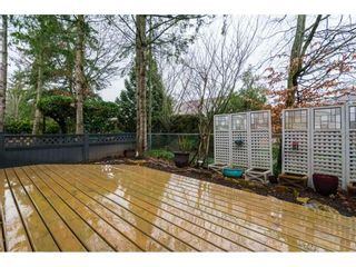 """Photo 19: 4 18883 65 Avenue in Surrey: Cloverdale BC Townhouse for sale in """"APPLEWOOD"""" (Cloverdale)  : MLS®# R2246448"""