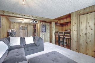 Photo 21: 136 Abingdon Way NE in Calgary: Abbeydale Detached for sale : MLS®# A1097346