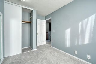 Photo 28: 375 Falshire Way NE in Calgary: Falconridge Detached for sale : MLS®# A1089444