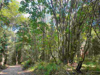 Photo 16: 890 EAGLES REST Lane: Galiano Island Land for sale (Islands-Van. & Gulf)  : MLS®# R2589986