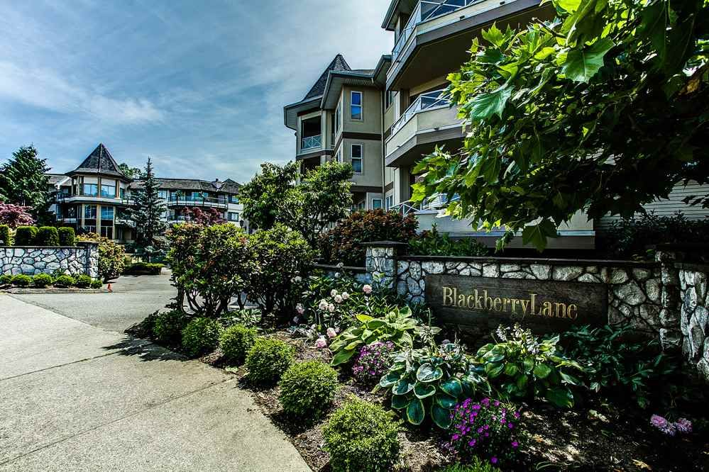 """Main Photo: 306 20120 56 Avenue in Langley: Langley City Condo for sale in """"Blackberry Lane"""" : MLS®# R2084458"""