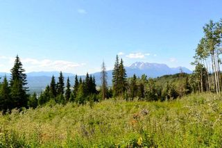 "Photo 1: LOT 1 HISLOP Road in Smithers: Smithers - Rural Land for sale in ""Hislop Road Area"" (Smithers And Area (Zone 54))  : MLS®# R2491414"