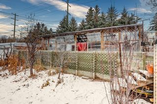 Photo 8: 4624 22 Avenue NW in Calgary: Montgomery Detached for sale : MLS®# A1055200