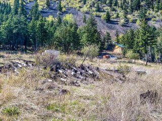 Photo 32: 1603 LADNER ROAD in Kamloops: Barnhartvale House for sale : MLS®# 164200