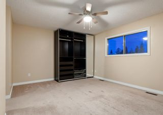 Photo 19: 11039 166 Avenue: Edmonton Detached for sale : MLS®# A1083224