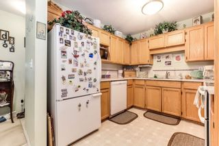 """Photo 10: 303 22275 123 Avenue in Maple Ridge: West Central Condo for sale in """"Mountain View Terrace"""" : MLS®# R2389765"""