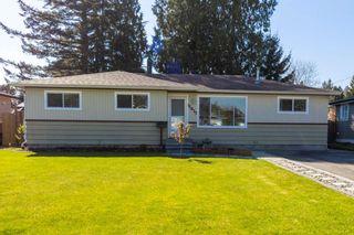 Photo 1: 11677 STEEVES Street in Maple Ridge: Southwest Maple Ridge House for sale : MLS®# R2569720