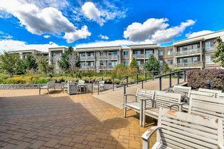 Photo 19: 233 15850 26 AVENUE in Surrey: Grandview Surrey Condo for sale (South Surrey White Rock)  : MLS®# R2090464