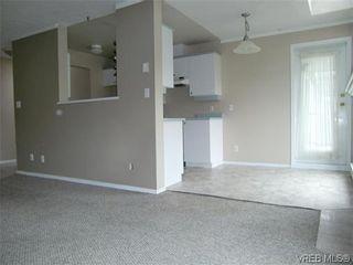 Photo 10: 406 2527 Quadra St in VICTORIA: Vi Hillside Condo for sale (Victoria)  : MLS®# 568823