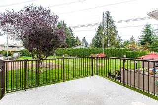 Photo 18: 2614 Spuraway Ave, Coquitlam - R2009705