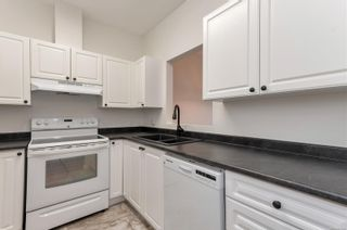 Photo 3: 104 280 S Dogwood St in : CR Campbell River Central Condo for sale (Campbell River)  : MLS®# 882348