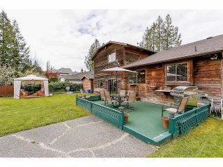 Photo 19: 6486 140 Street in Surrey: East Newton House for sale : MLS®# F1410007