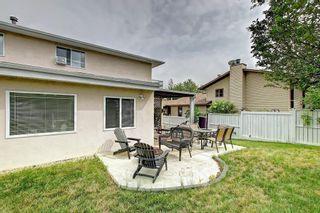 Photo 48: 83 CASTLEFALL Road NE in Calgary: Castleridge Detached for sale : MLS®# C4194335