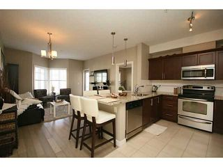 Photo 5: 307 20 ROYAL OAK Plaza NW in Calgary: Royal Oak Condo for sale : MLS®# C3656329