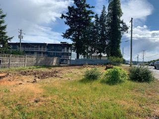 Photo 4: 901 Dogwood St in : CR Campbell River Central Land for sale (Campbell River)  : MLS®# 876477