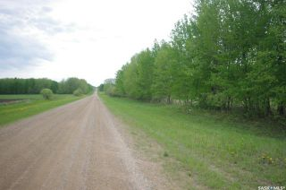 Photo 21: Weiss Lakefront Acreage in Big River: Farm for sale : MLS®# SK834154