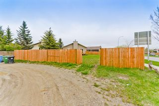 Photo 39: 45 Martinview Crescent NE in Calgary: Martindale Detached for sale : MLS®# A1112618