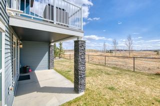 Photo 38: 22 Nolan Hill Heights NW in Calgary: Nolan Hill Row/Townhouse for sale : MLS®# A1101368