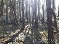 Photo 9: Lot 170 Halibut Hill in : Isl Mudge Island Land for sale (Islands)  : MLS®# 866549