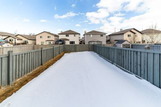 Photo 28: 4527 212A Street NW in Edmonton: Zone 58 House Half Duplex for sale : MLS®# E4232167