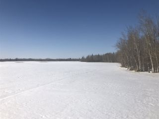 Photo 11: 253 TWP RD 610: Rural Westlock County Rural Land/Vacant Lot for sale : MLS®# E4191859