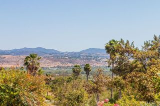 Photo 39: FALLBROOK House for sale : 3 bedrooms : 2201 Dos Lomas