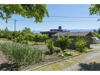 Photo 13: 41594 SOUTH SUMAS Road in Chilliwack: Greendale Chilliwack House for sale (Sardis)  : MLS®# R2589043