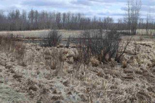 Photo 25: Twp 510 RR 33: Rural Leduc County Rural Land/Vacant Lot for sale : MLS®# E4239253