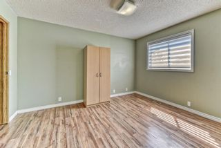 Photo 12: 262 Martinwood Place NE in Calgary: Martindale Detached for sale : MLS®# A1123392