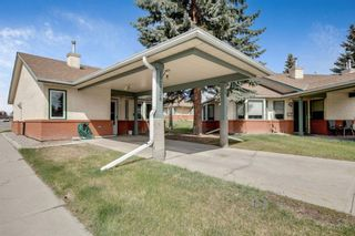 Photo 1: 2738 Dovely Park SE in Calgary: Dover Detached for sale : MLS®# A1104684