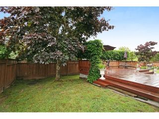 """Photo 20: 18861 64TH Avenue in Surrey: Cloverdale BC House for sale in """"CLOVERDALE"""" (Cloverdale)  : MLS®# F1442792"""