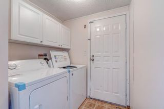 Photo 15: 214 Erin Woods Circle SE in Calgary: Erin Woods Detached for sale : MLS®# A1120105