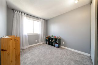 Photo 30: 6719 187 Street NW in Edmonton: Zone 20 House for sale : MLS®# E4241584