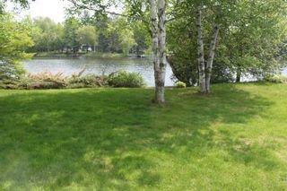 Photo 13: 14 Matheson Road in Kawartha Lakes: Rural Eldon House (Bungalow) for sale : MLS®# X2929921