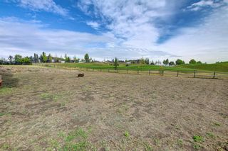 Photo 45: 150 Speargrass Crescent: Carseland Detached for sale : MLS®# A1146791