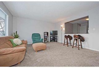 Photo 7: 4728 Mardale Road NE in Calgary: Marlborough Detached for sale : MLS®# A1072810