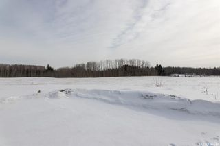 Photo 41: Holbein Acreage in Shellbrook: Residential for sale (Shellbrook Rm No. 493)  : MLS®# SK842866