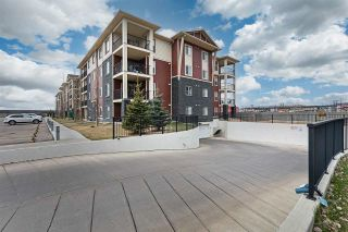 Photo 7: 306 5810 MULLEN Place in Edmonton: Zone 14 Condo for sale : MLS®# E4241982