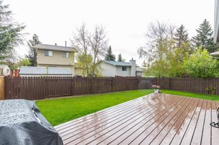Photo 33: 132 Pineland Place NE in Calgary: Pineridge Detached for sale : MLS®# A1110576