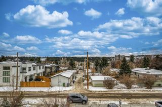 Photo 26: 3646 8 Avenue NW in Calgary: Parkdale Detached for sale : MLS®# A1061957