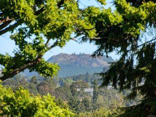 Photo 22: 401 1460 Pandora Ave in Victoria: Vi Fernwood Condo for sale : MLS®# 884978