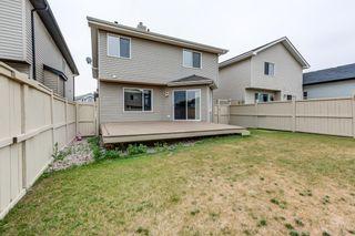 Photo 32: 4608 162A Avenue in Edmonton: Zone 03 House for sale : MLS®# E4255114