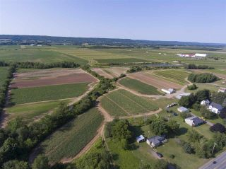 Photo 25: 2969 Highway 1 in Aylesford East: 404-Kings County Farm for sale (Annapolis Valley)  : MLS®# 201919454