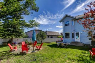 Photo 31: 26 Harvest Rose Place NE in Calgary: Harvest Hills Detached for sale : MLS®# A1124460