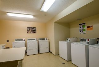 Photo 11: 119 8411 ACKROYD Road in Richmond: Brighouse Condo for sale : MLS®# R2310761