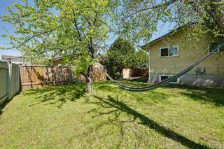 Photo 4: 10223 171A Avenue in Edmonton: Zone 27 House for sale : MLS®# E4255487