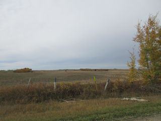 Photo 3: RR 270 North of Hwy 37: Rural Sturgeon County Rural Land/Vacant Lot for sale : MLS®# E4265129