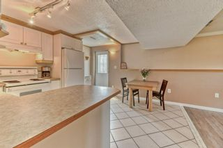 Photo 19: 703 Alderwood Place SE in Calgary: Acadia Detached for sale : MLS®# A1131581